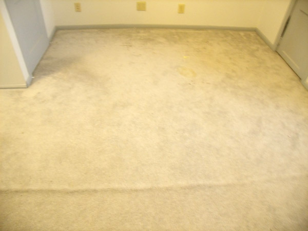 Carpet Cleaning Pictures Rochester Mn